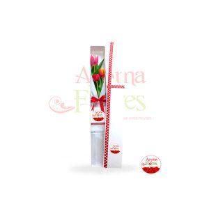 d-caja-3-tulipan-ct3-50.00