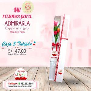 Caja 3 Tulipán Aroma a flores
