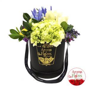 box-hortencia-aroma-a-flores