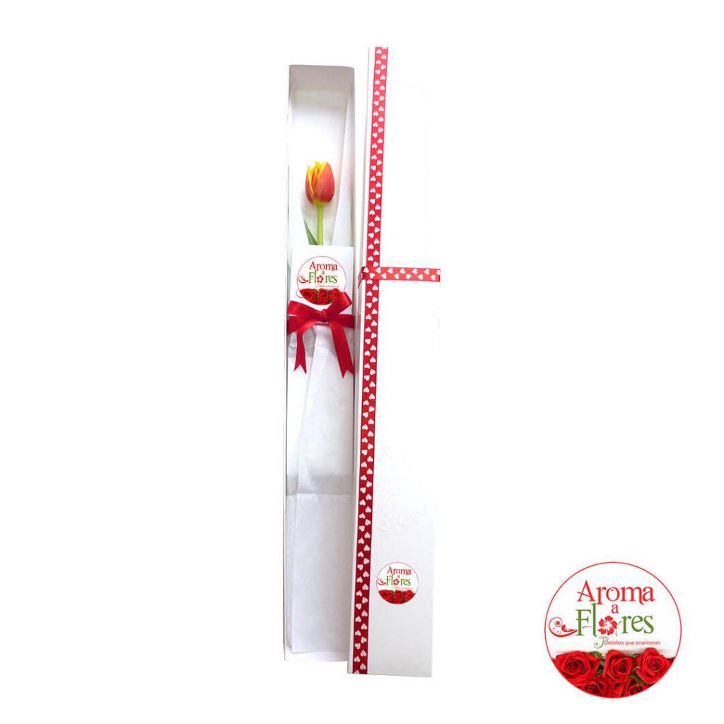 caja-1-tulipan-ct1-23