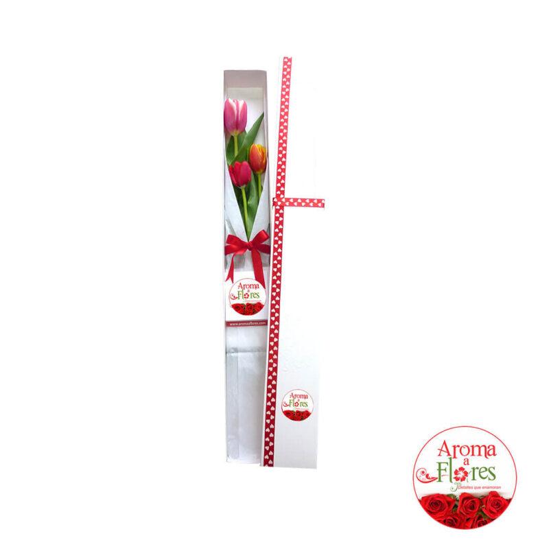 caja-3-tulipan-ct3-47