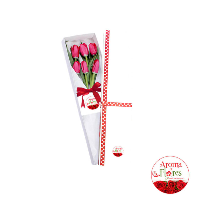 caja-6-tulipanes-ct6-77