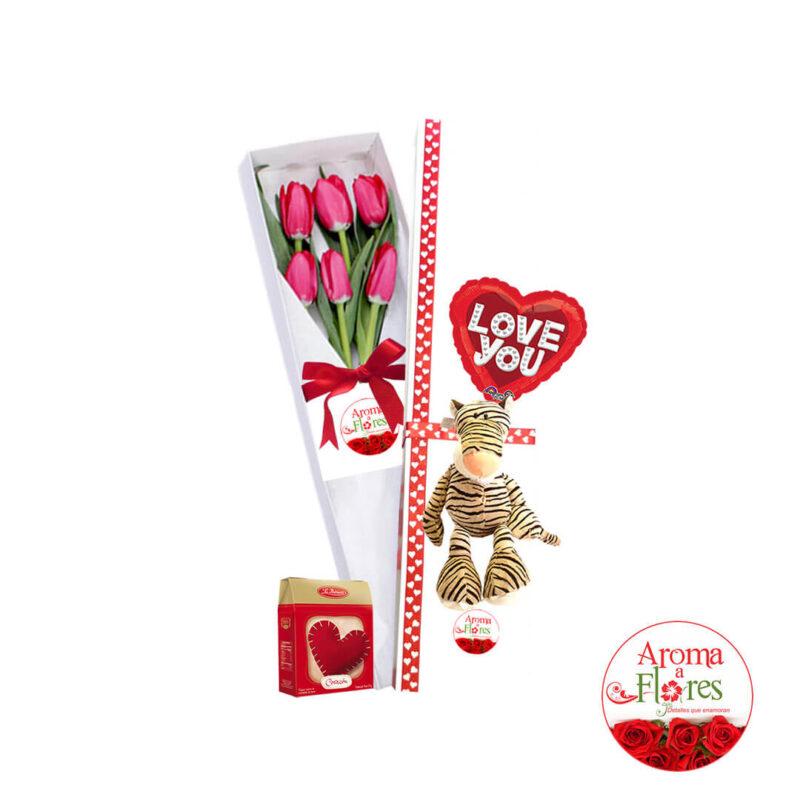 caja-6t-amor-ctx6-131