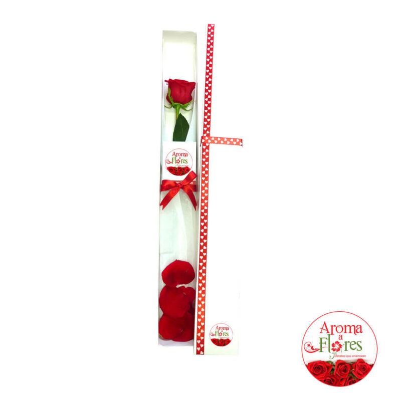 caja 1 rosa aroma