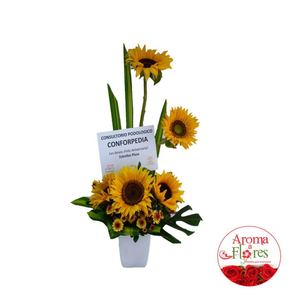 Camino de Girasol Aroma a flores
