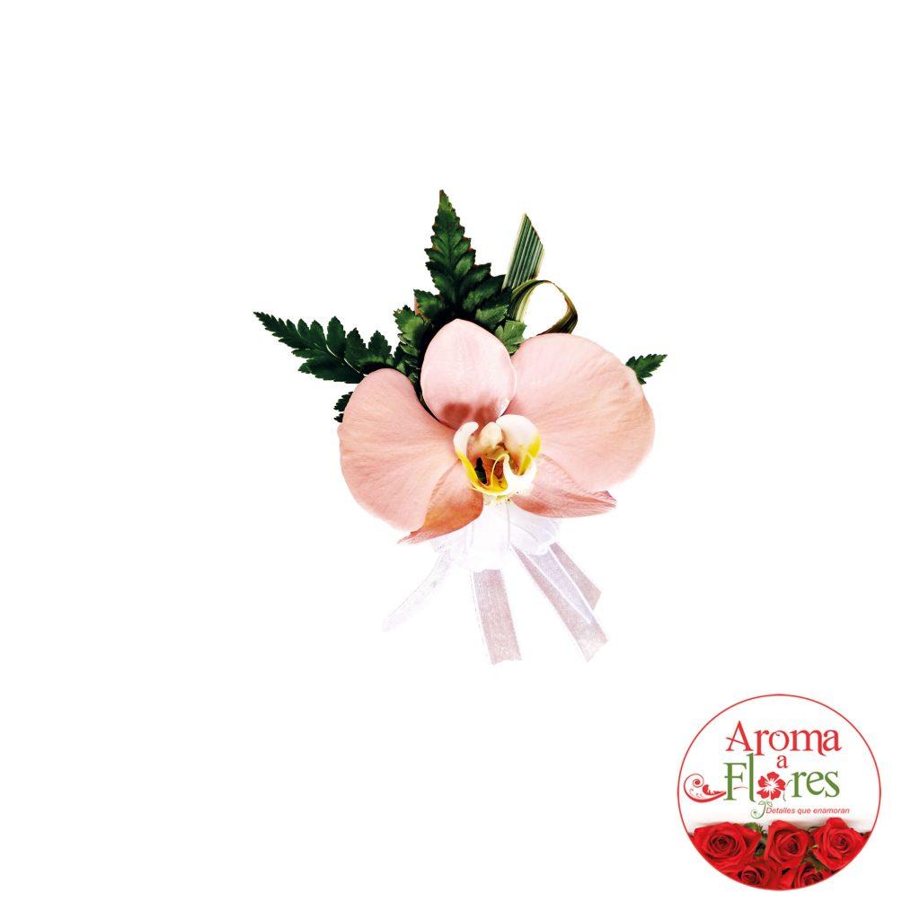 orquideas2-aromaaflores