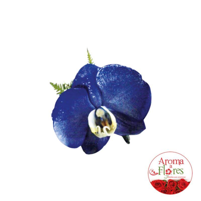 orquidea9-aromaaflores