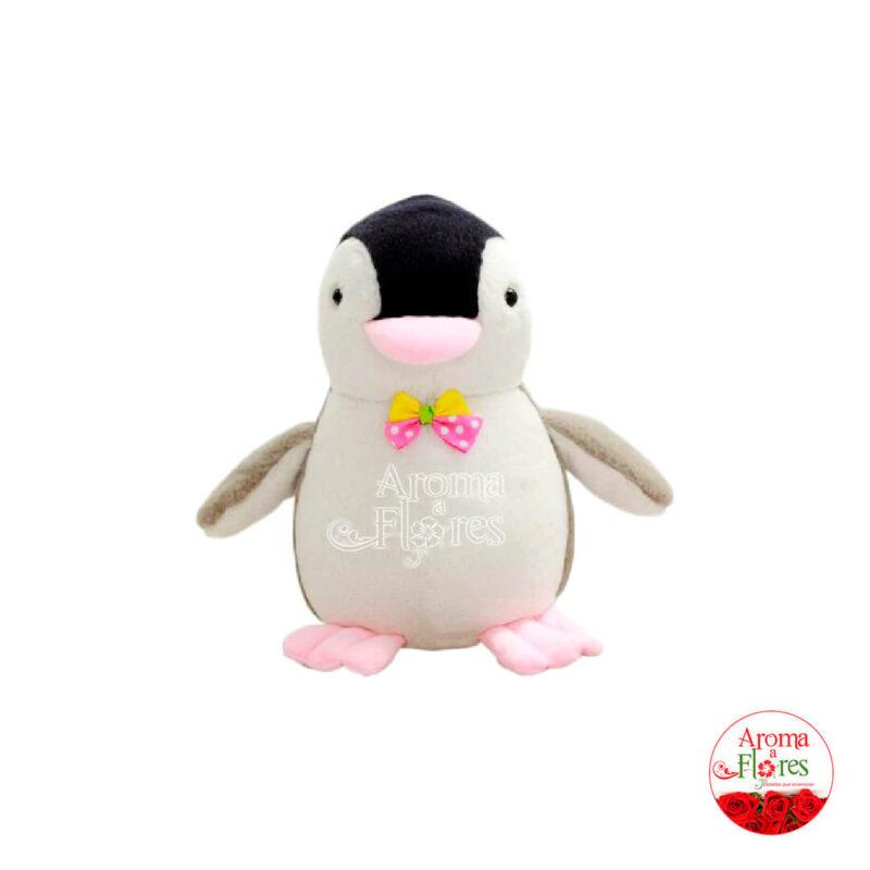 pinguino-xs
