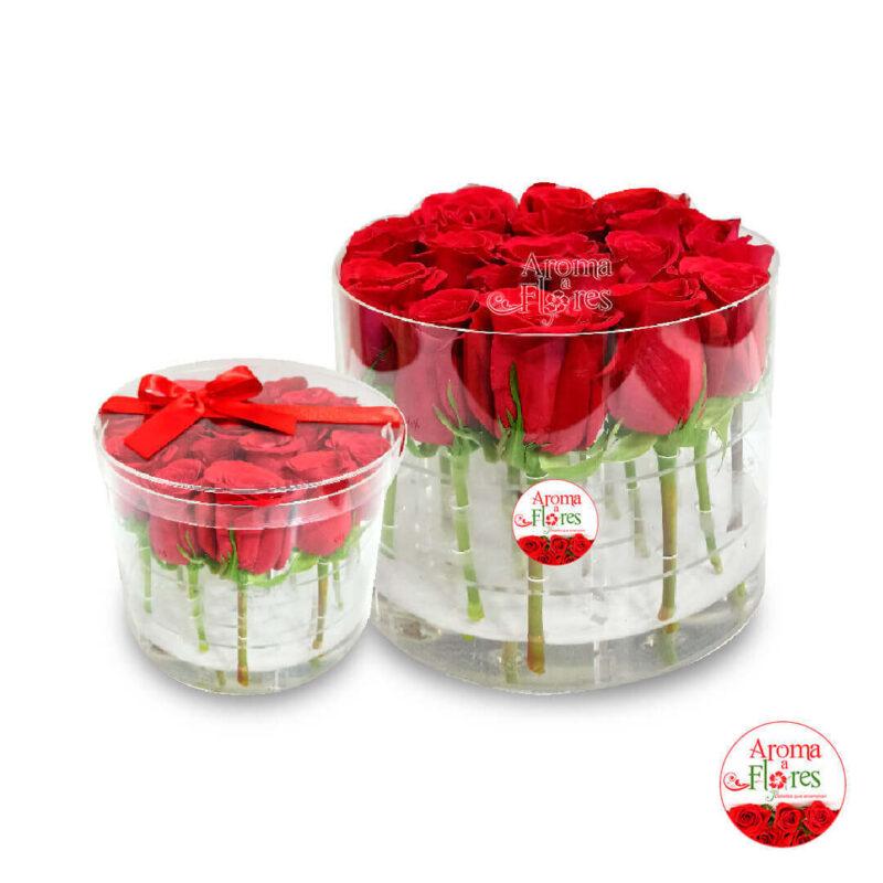 caja-acrilica-20-rosas