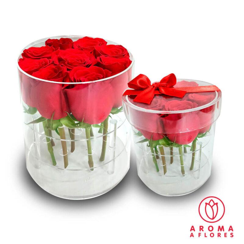 Box-Acrilico-9-Rosas-aromaaflores
