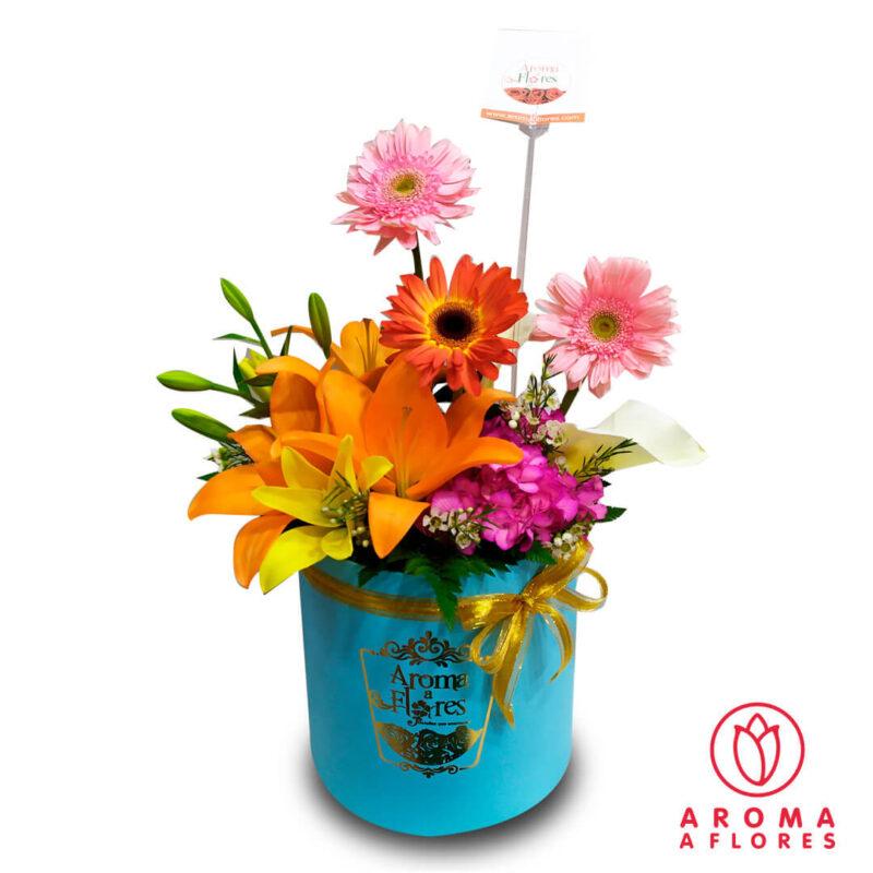 Box-Lilium-y-Lilium-aromaaflores