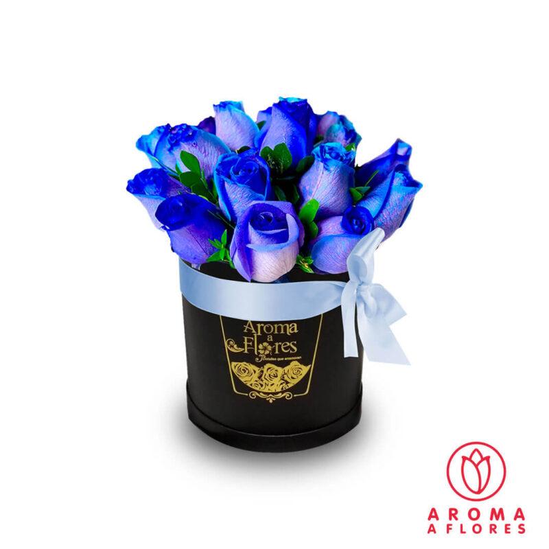 Box-Petit-12-Rosas-azules-aromaaflores