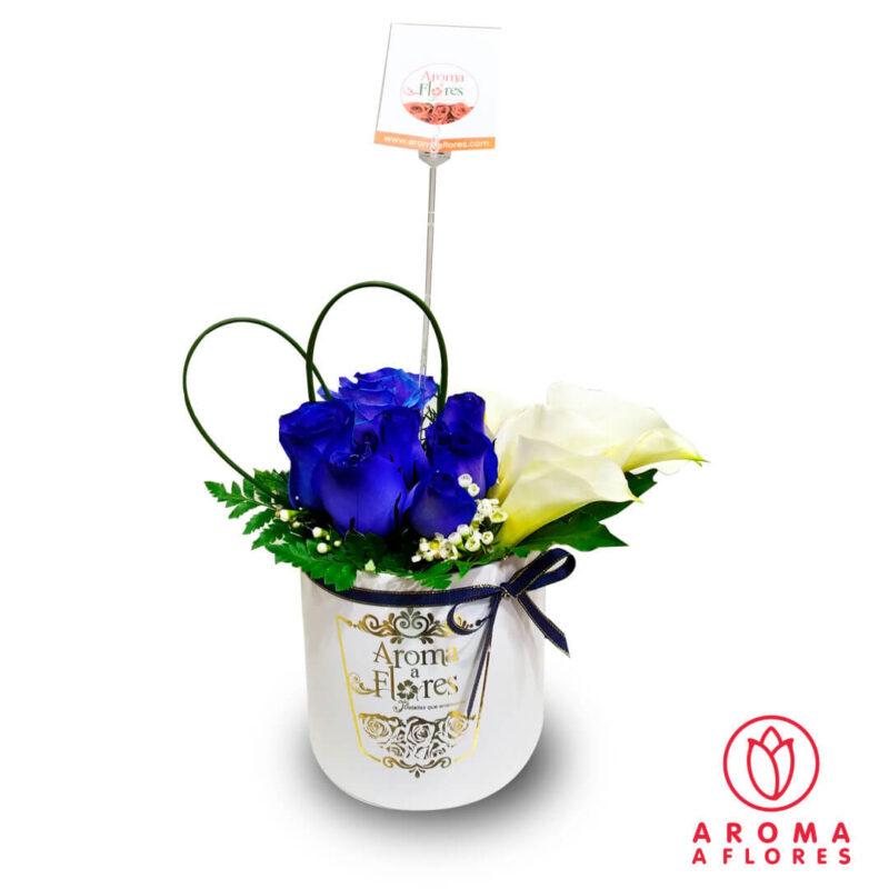 Box-Petit-6-rosas-Azules-y-Calas-aromaaflores