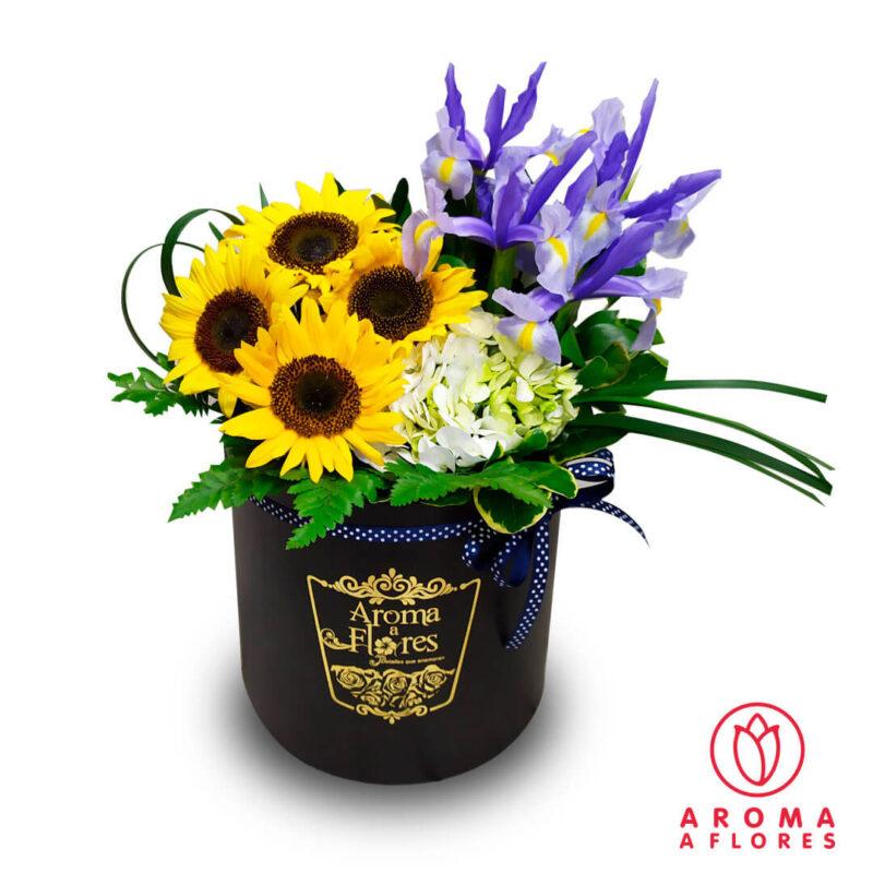 Box-Petit-Iris-y-Girasoles-aromaaflores