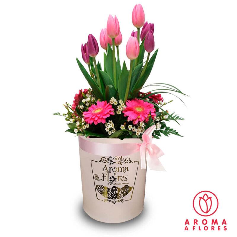 Box-Tulipanes-y-Gerberas-aromaaflores