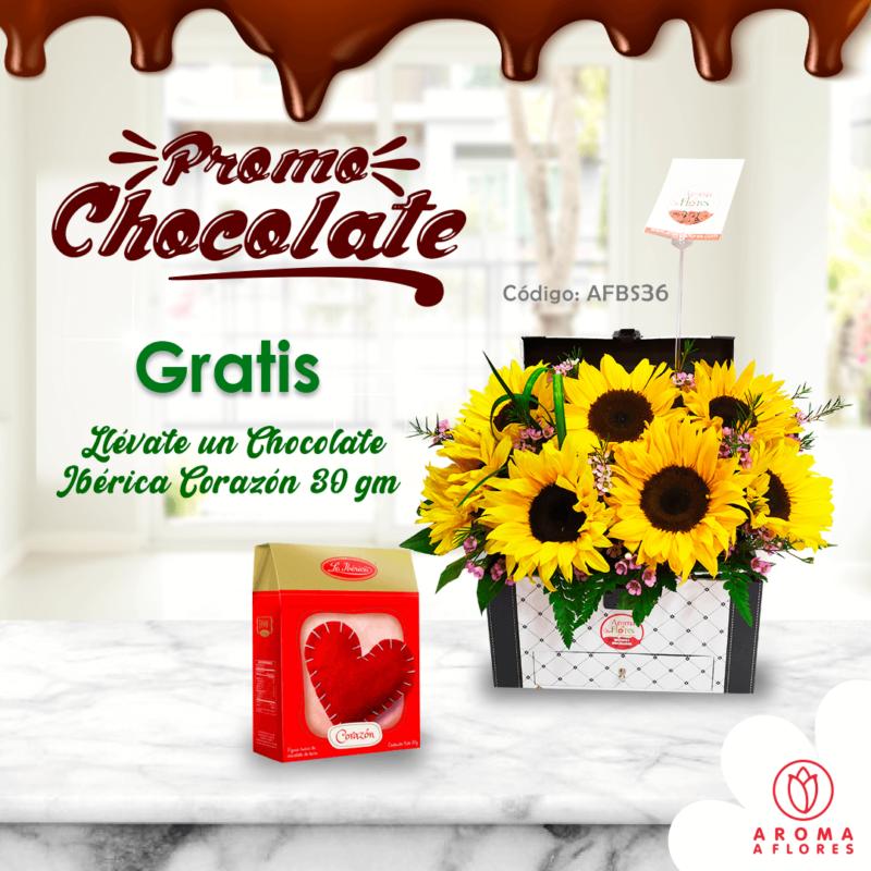 box-baul-girasol-prmo chocolate-aromaaflores