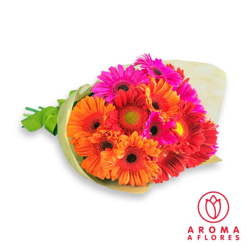 ramo-15-gerberas-aromaaflores