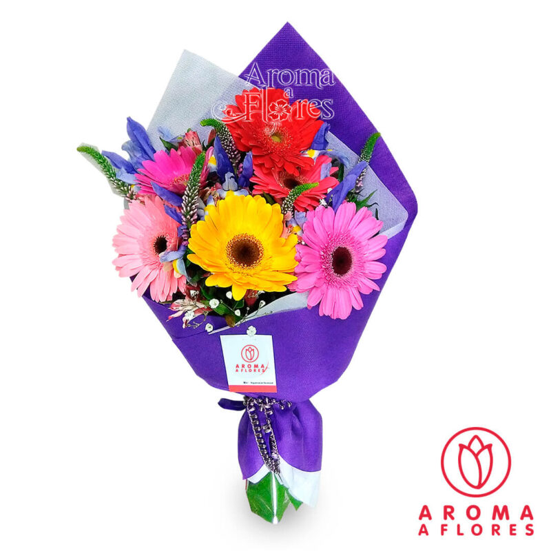 ramo-6-rosas-gerbera-II-aromaaflores