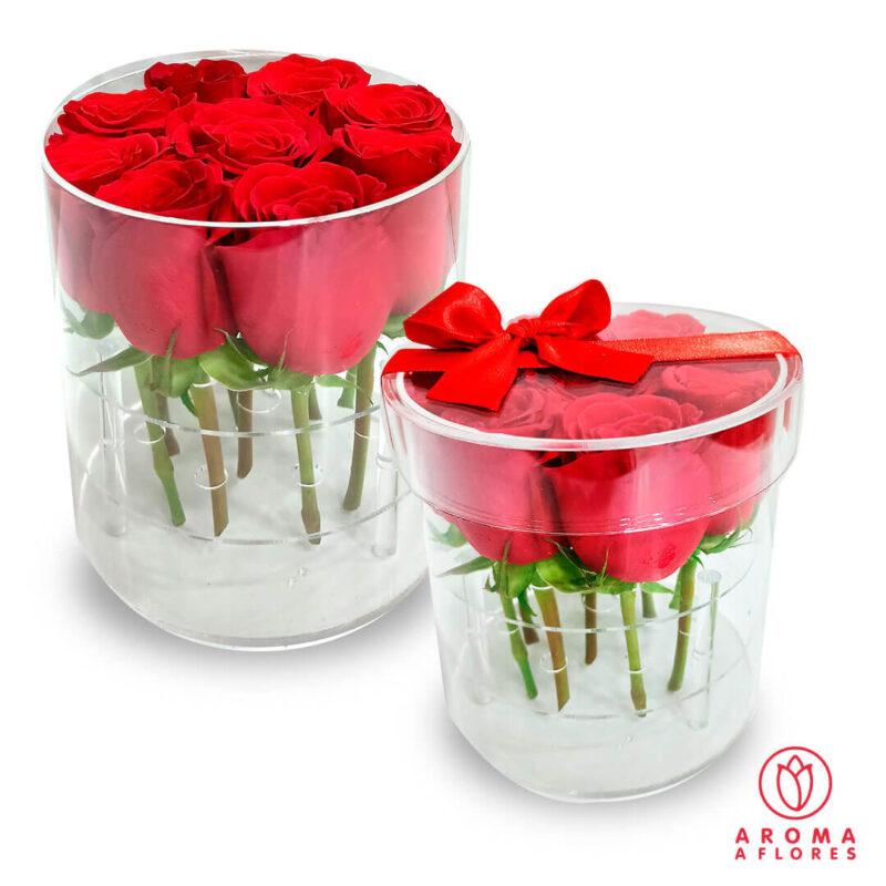 Box-Acrilico-20-Rosas-aromaaflores
