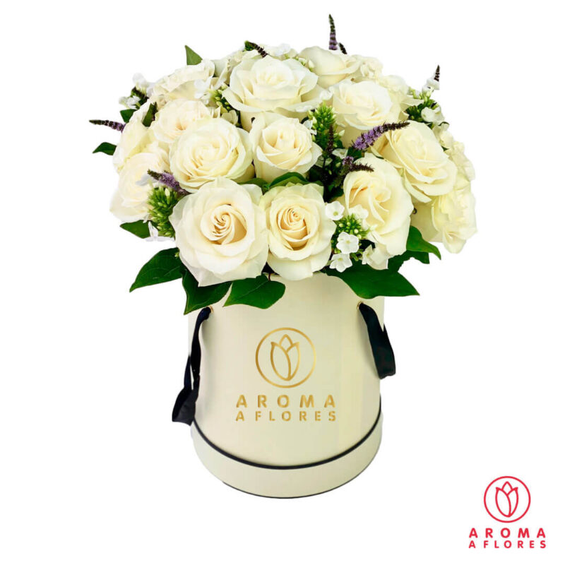 box-18-Rosas-bl-silver-aromaaflores