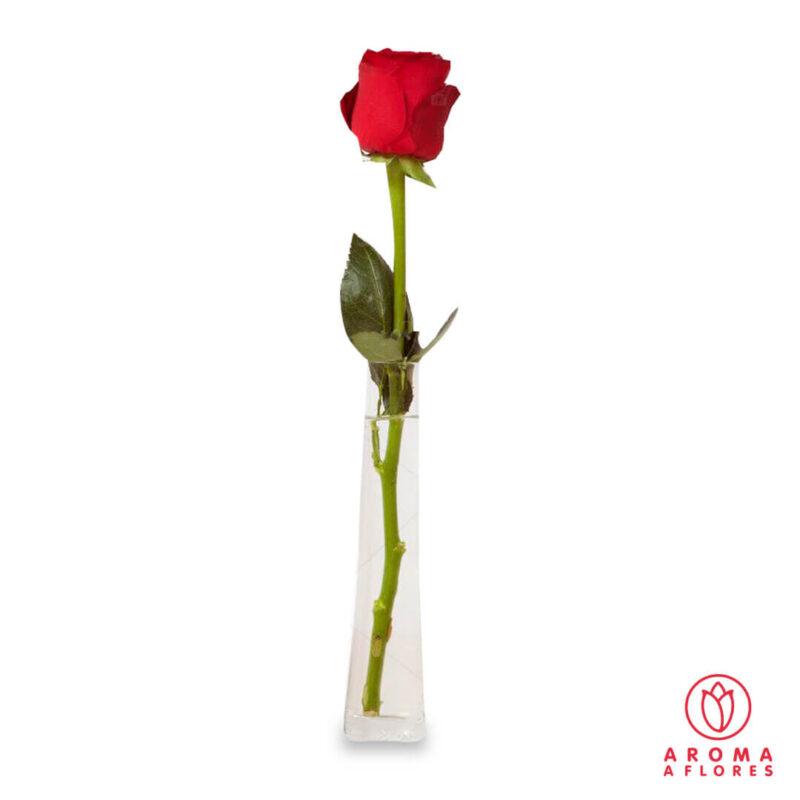 Florero-1-rosa-aromaaflores