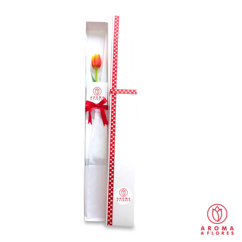 caja-1-tulipan-aromaaflores
