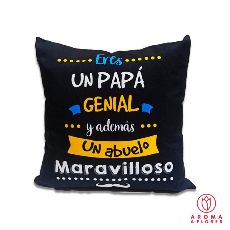 papa-y-abuelo-maraviloso